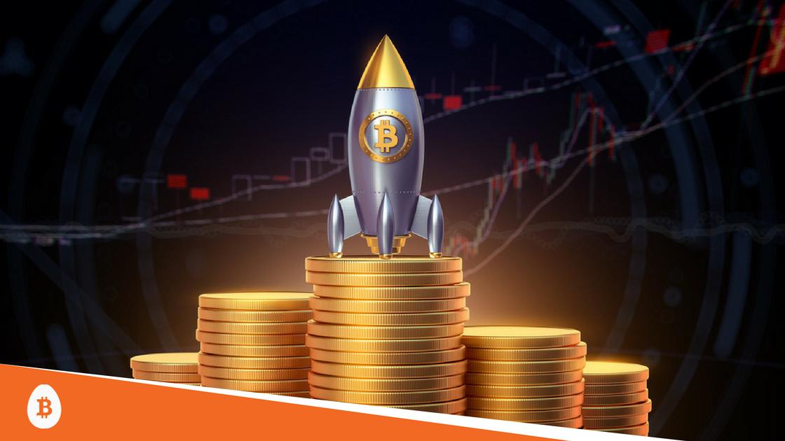 Bitcoin cash lead developer